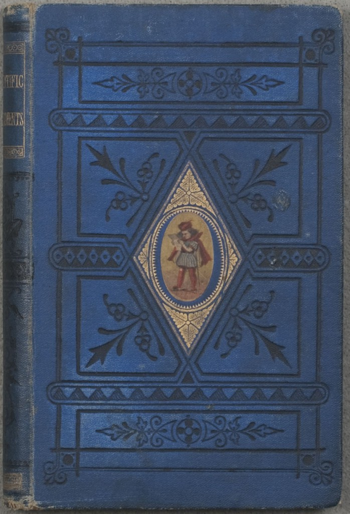 Decorated publisher's binding