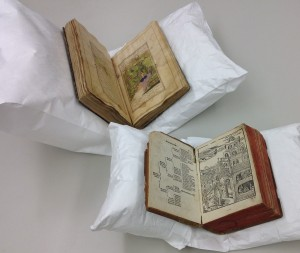Two rare volumes from the Institute Archives and Special  Collections supported on Tyvek + air cushion book cradles. Back: need title. Front: Theodore Reisch's Margarita Philosophica, 1508.