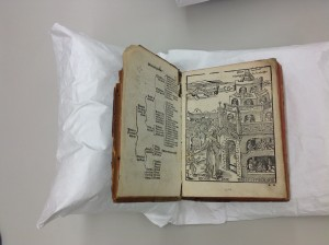 rare book in cradle