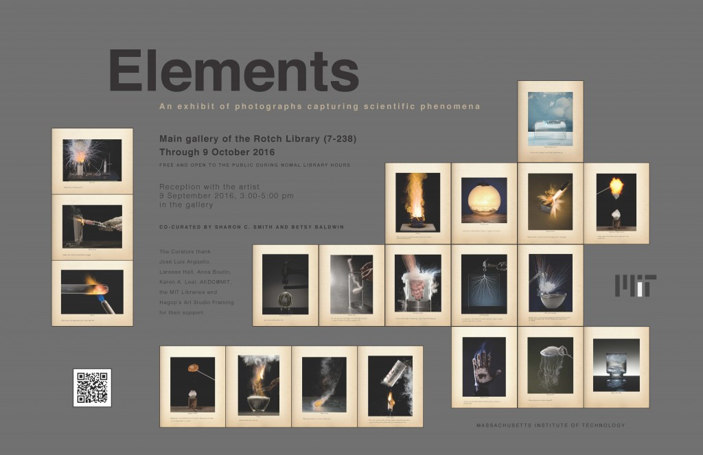 Elements show leaves Rotch Library October 9